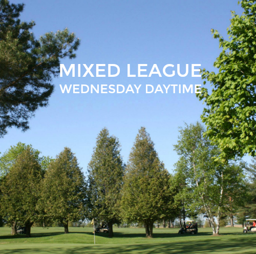 mixed league