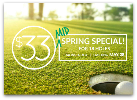 spring golf special ds